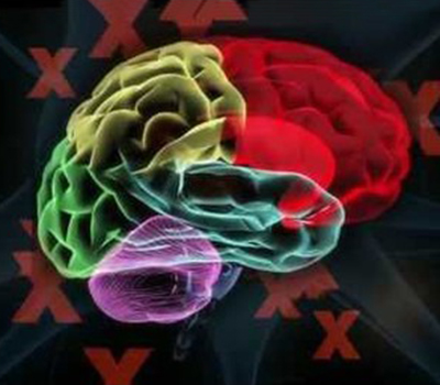 TEDxCaltech: The Brain